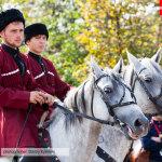 казаки на лошадях